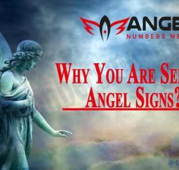 Why You Are Seeing Angel Signs